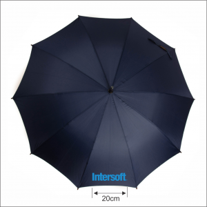INTERSOFT-SIMULARE-300x300